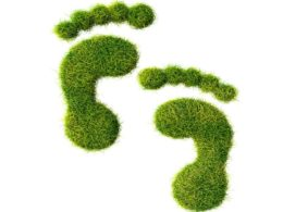 Environment sustainability
